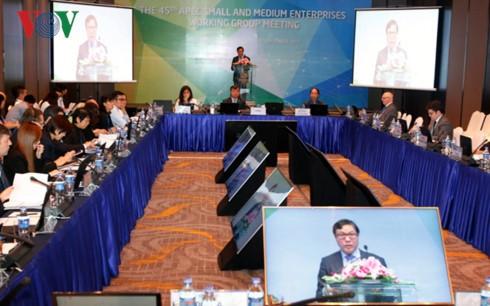 АТЭС-2017: активизация сотрудничества в развитии малого и среднего бизнеса - ảnh 1