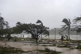 No Vietnamese deaths reported after cyclone Pam - ảnh 1