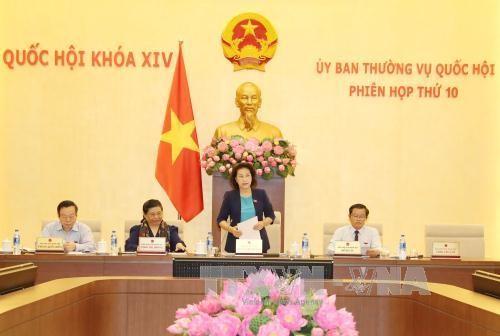 Continúan agenda de X reunión del Comité Permanente del Parlamento vietnamita - ảnh 1