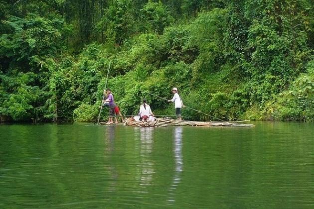 Vistan el Parque Nacional de Pu Mat en la provincia de Nghe An - ảnh 2
