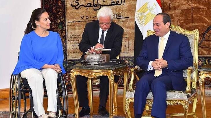 Argentina y Egipto votan por consolidar la cooperación económica y comercial - ảnh 1