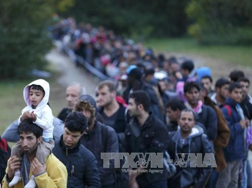 Unión Europea deporta a inmigrantes que llegaron por Grecia - ảnh 1