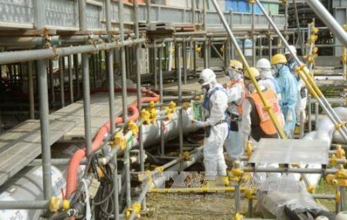 Japón comienza la última etapa de refrigeración del muro de hielo de Fukushima - ảnh 1