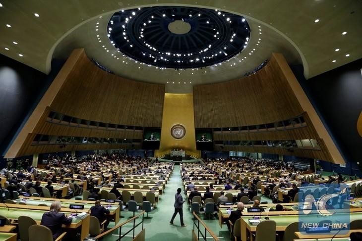 La ONU aúna esfuerzos para su renovación tras 72 años desde su fundación - ảnh 1