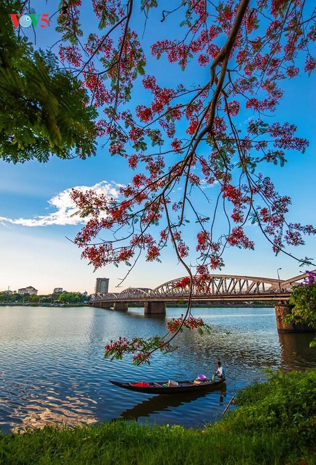 Momentos bellos de la antigua ciudad imperial de Hue - ảnh 11