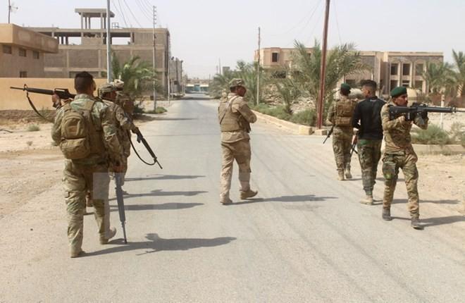 Las fuerzas iraquíes arrebatan al EI siete localidades en el noroeste del país - ảnh 1