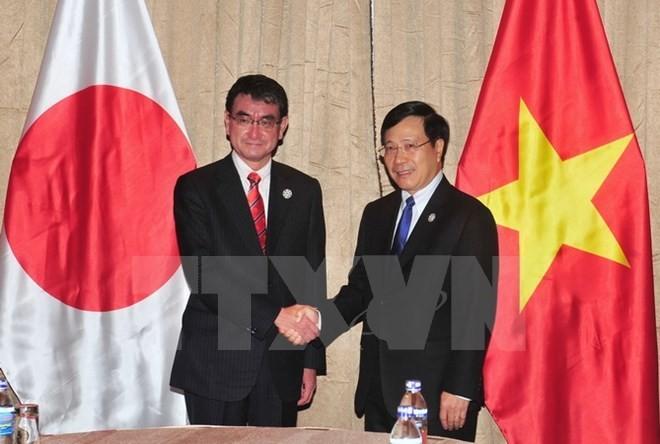 Japón y el WEF aspiran promover la cooperación con Vietnam - ảnh 1