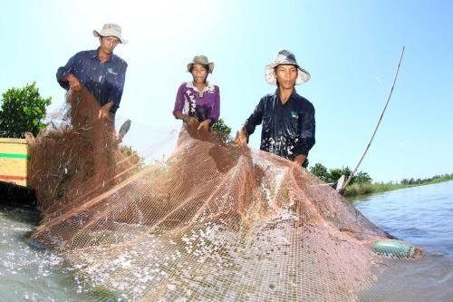 Dông Thap: les crues, enfin!  - ảnh 1
