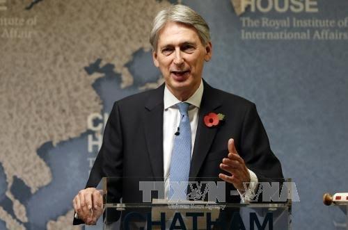 Brexit : Londres veut déployer un plan de relance à l'automne - ảnh 1