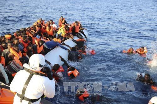 Plus de 239 morts dans deux naufrages au large de la Libye - ảnh 1