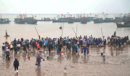 Le marché aux poissons de Giao Hai - ảnh 1