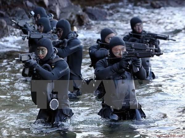 Manœuvre navale destinée à suivre les missiles nord-coréens - ảnh 1
