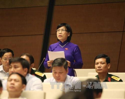 L'AN adopte la résolution sur le plan financier quinquennal - ảnh 1