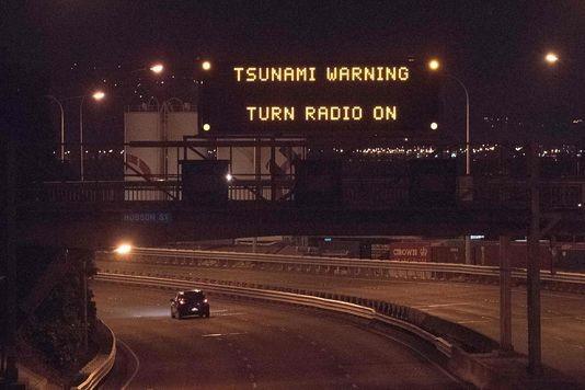 Un séisme, suivi d'un tsunami, frappe la Nouvelle-Zélande - ảnh 1