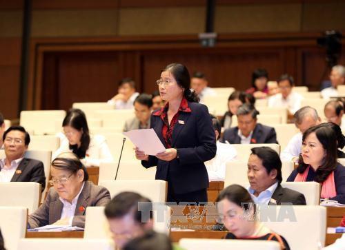 Assemblée nationale approuve la répartition budgétaire de 2017 - ảnh 1