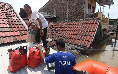 Indonésie : plus de 6.000 personnes déplacées suite aux inondations - ảnh 1