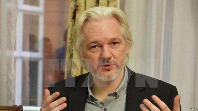Julian Assange interrogé à l'ambassade d'Equateur à Londres - ảnh 1