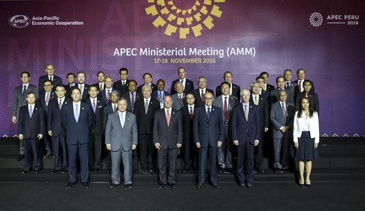 APEC 2016 : pour l'intégration régionale - ảnh 1