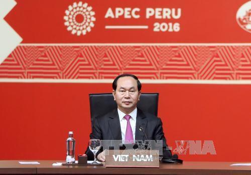 Tran Dai Quang à la clôture du 24ème sommet de l'APEC  - ảnh 1