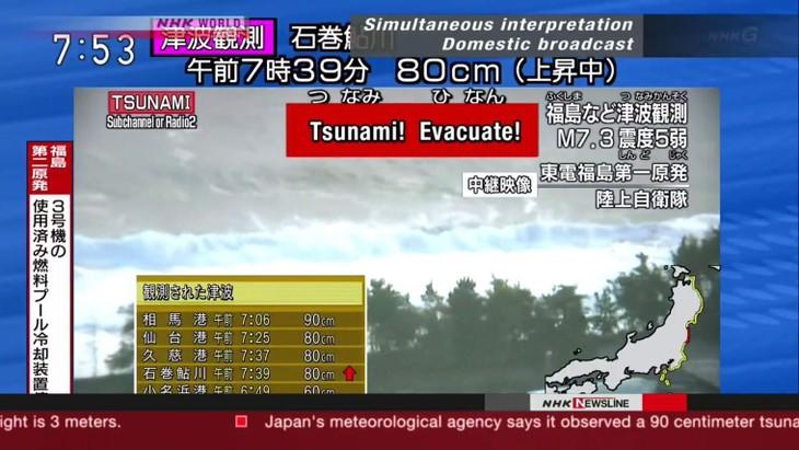 Japon: un fort séisme au large de Fukushima déclenche un tsunami  - ảnh 1