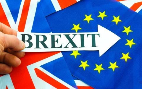 Brexit: première rencontre entre Michel Barnier et David Davis à Bruxelles - ảnh 1