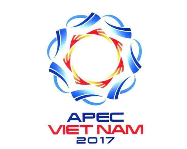 Le Vietnam s'affirme avec l'année de l'APEC 2017 - ảnh 1
