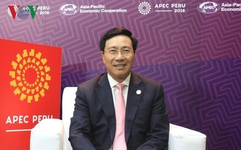 L'APEC croit dans l'année de l'APEC 2017 au Vietnam - ảnh 1