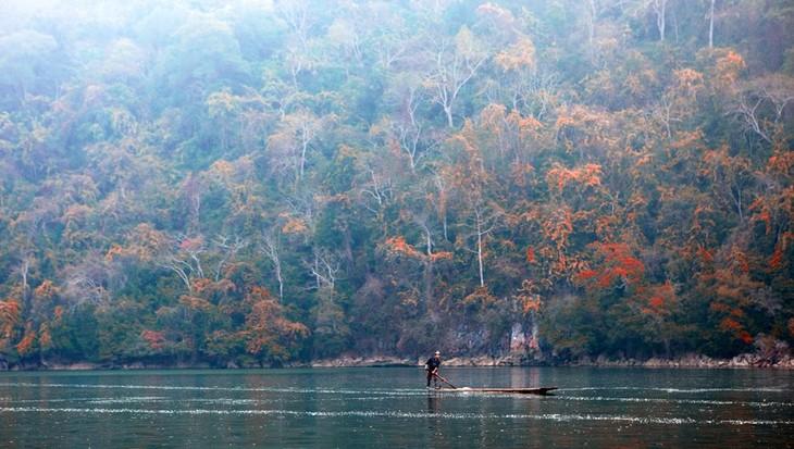 Ba Be-le plus grand lac naturel du Vietnam  - ảnh 3