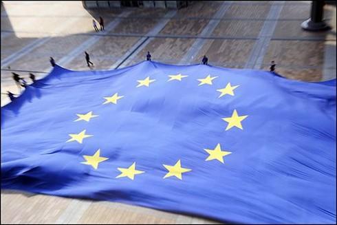 Bruxelles: l'avenir de l'Europe en débat - ảnh 1
