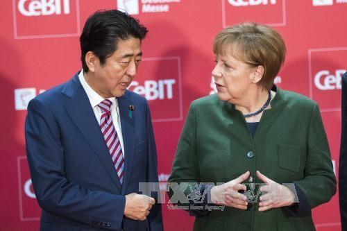Abe et Merkel plaident pour le libre-échange - ảnh 1