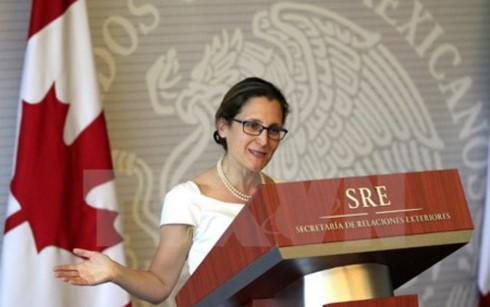 Porter les relations Vietnam-Canada à une nouvelle hauteur - ảnh 1