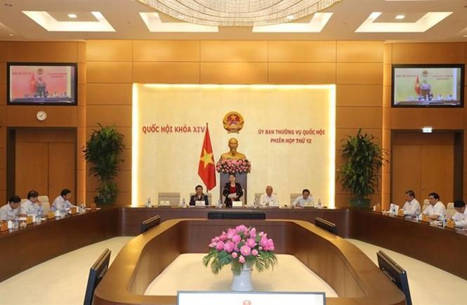 Assemblée nationale: débat sur la loi sur l'administration publique - ảnh 1