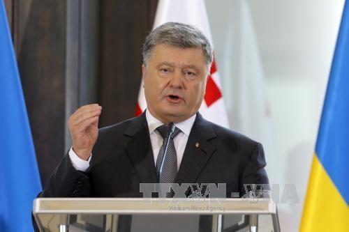Le président ukrainien Petro Porochenko réaffirme sa volonté d'organiser un référendum sur l'OTAN - ảnh 1
