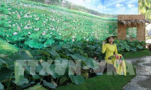 Ouverture de la Fête des fleurs de lotus à Dong Thap - ảnh 1