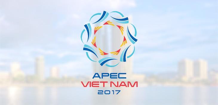 Bientôt la conférence ministérielle de l'APEC 2017 sur les PME - ảnh 1