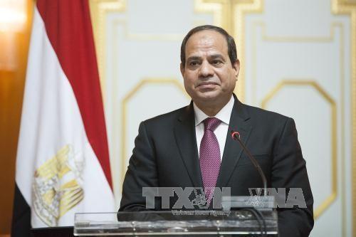 Le président égyptien entame sa visite d'Etat au Vietnam - ảnh 1