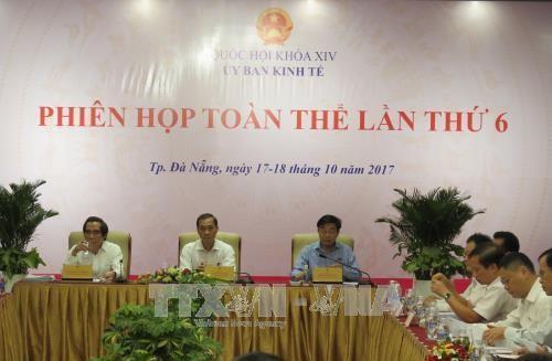 La commission économique de l'AN tient une session plénière à Da Nang - ảnh 1
