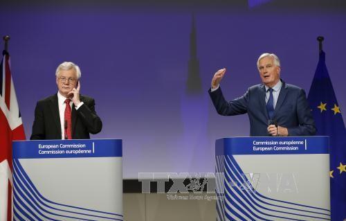 Brexit : l'Union européenne propose une période de transition de 20 mois au maximum - ảnh 1