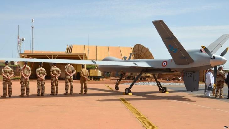 Première opération pour la force anti-jihadiste G5 Sahel - ảnh 1