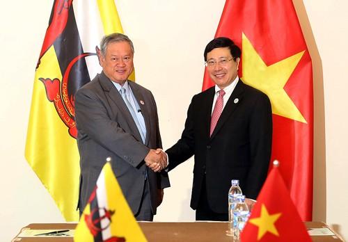 APEC 2017 : Pham Binh Minh rencontre le 2ème ministre des Affaires étrangères du Brunei - ảnh 1