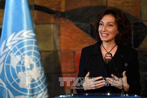 La Française Audrey Azoulay confirmée à la direction de l'Unesco  - ảnh 1