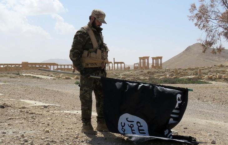 L'Afrique du Nord s'inquiète du retour des combattants de Daesh - ảnh 1