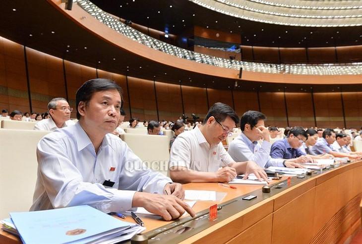 La loi sur l'élevage, un levier pour le développement agricole - ảnh 1