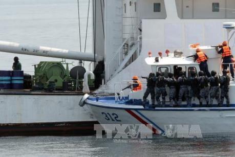 Страны ЮВА координируют действия для обеспечения морской безопасности - ảnh 1