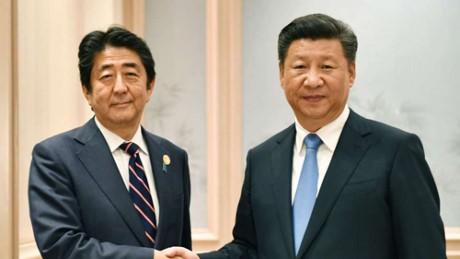 Лидеры Японии и Китая на полях саммита G20 обсудили двусторонние отношения - ảnh 1