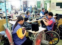 Modèle de formation professionnelle liée à l'emploi pour les handicapés - ảnh 1