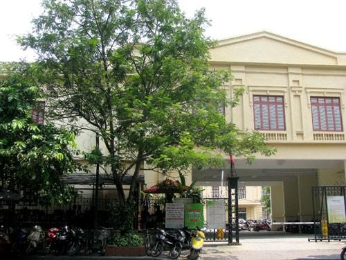 Le musée national d'Histoire vietnamienne - ảnh 2