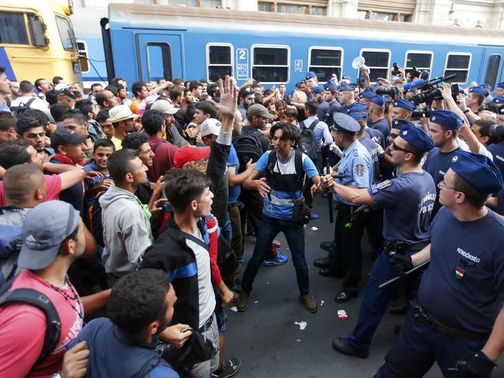 Migrations: l'espace Schengen «réduit en miettes» - ảnh 1