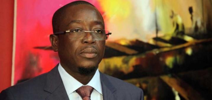 Guinée Bissau : Démission du nouveau Premier ministre  - ảnh 1