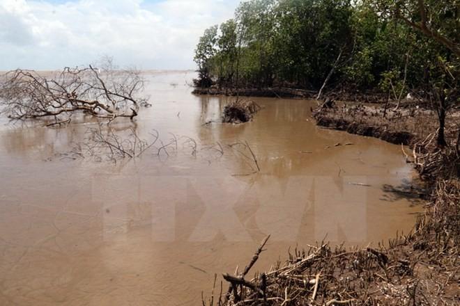 Vietnam-UE : partage d'expériences dans l'adaptation au changement climatique - ảnh 1